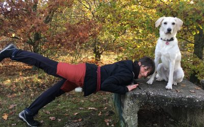 Outdoor Training – auch mit Hund